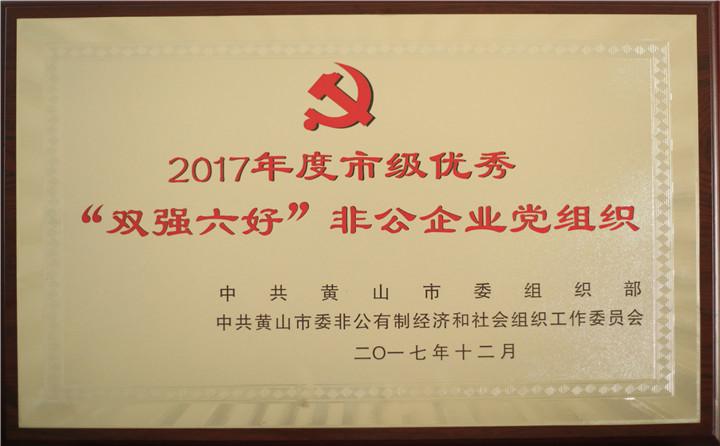 """2017年度市级优秀""""双强六好""""非公企业党组织"""
